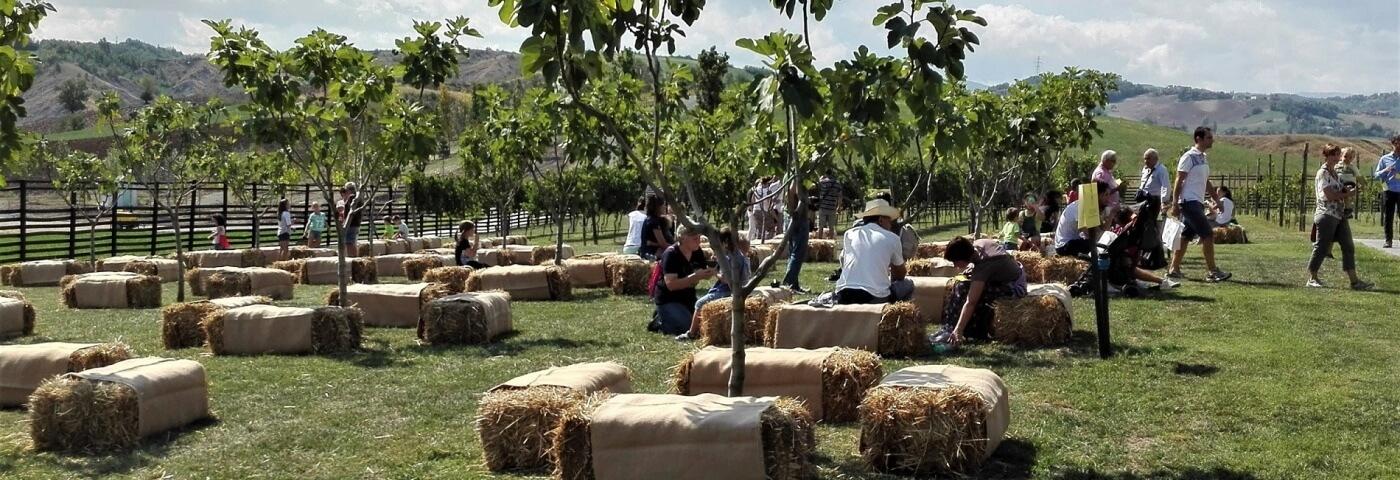 Rural Festival l'8 e il 9 settembre a Rivalta di Lesignano de' Bagni