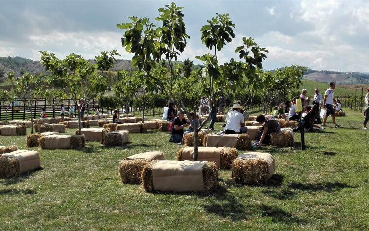 Rural - In relax sotto ai fichi della fattoria di Rivalta, mr