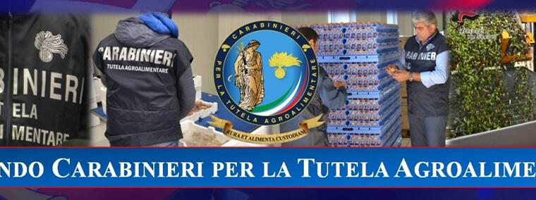 banner_Carabinieri_Tutela