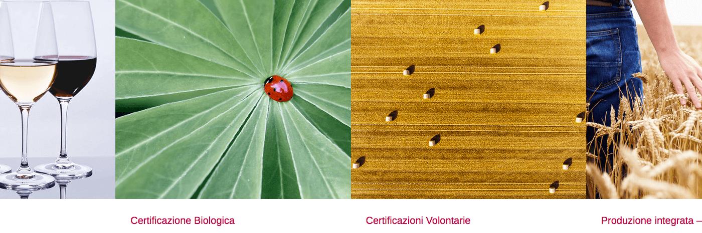 Valoritalia presenta al Sana le sue certificazioni sostenibili